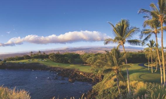 Hawaii Cove