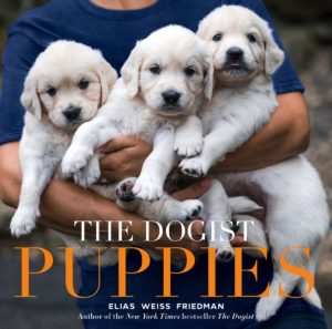 COVER. The Dogist Puppies_1200