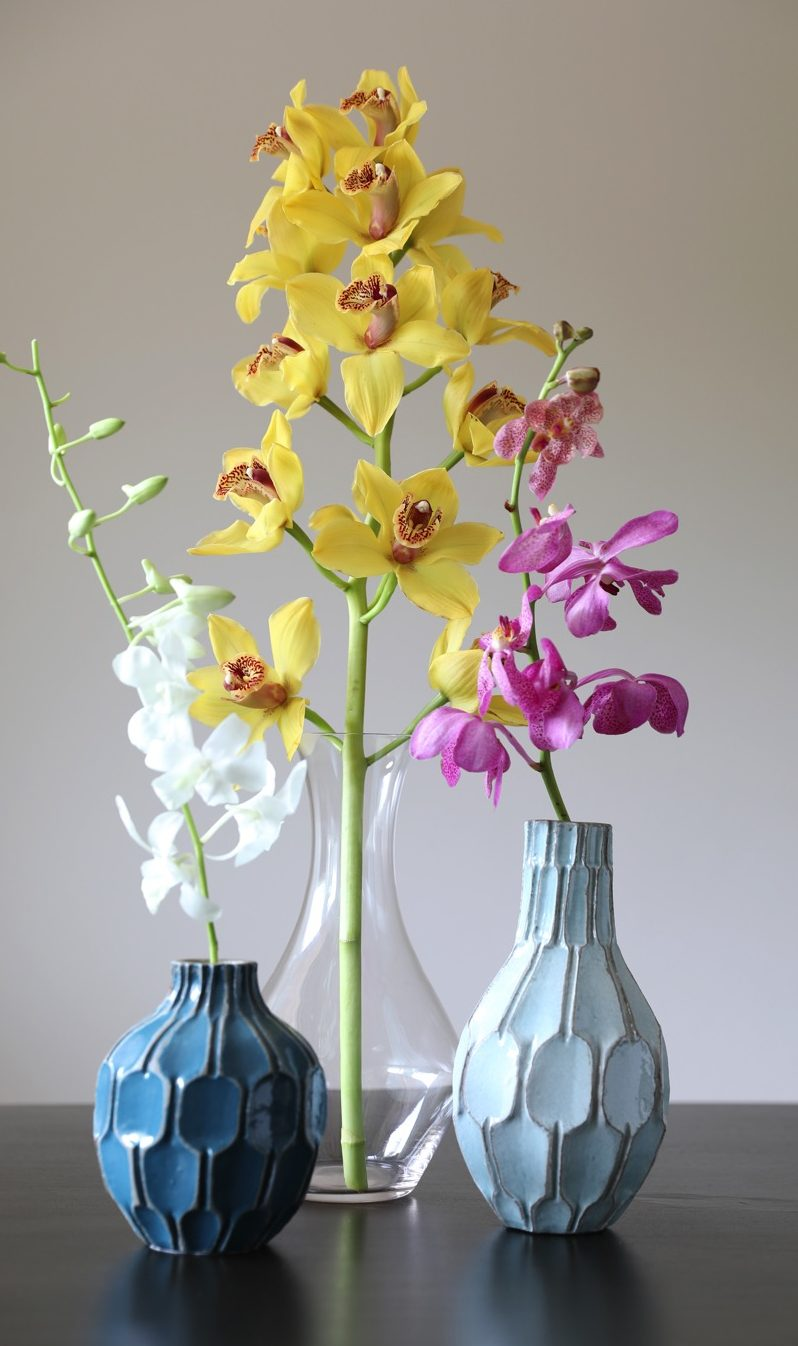Stems | White Dendrobium Orchid, Yellow  Cymbidium Orchid & Pink Mokara  Orchid