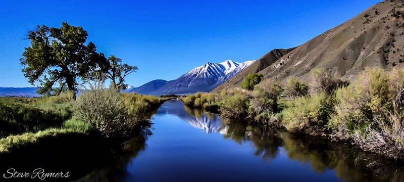 Carson River | Ronele Dotson