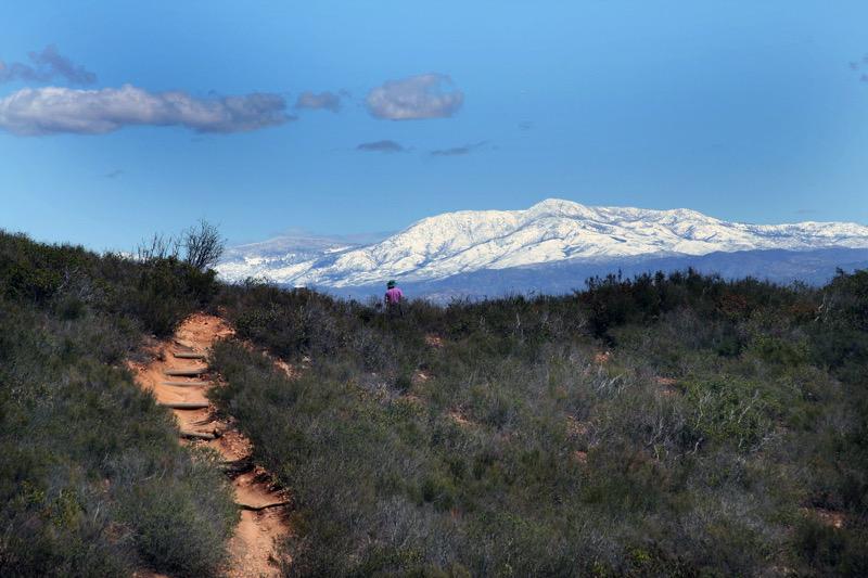 A trail at Mission Trails Regional Park | Joanne DiBona